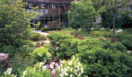 The lush front entry to the Chicago Center for Green Technology, designed by WRD Environmental